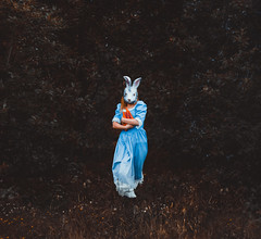 Protecting illusions (NightyLik) Tags: blue orange rabbit bunny grass forest woods mask alice illusion carrots concept conceptual wonderland