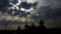 328/365 Above all (darioseventy) Tags: clouds nuvole sunrise alba sun sunbeams trees alberi silhouette backlight controluce sole raggidisole