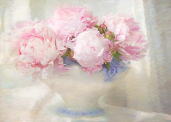 The scent of peonies. (BirgittaSjostedt) Tags: peony pot paint txture flower nature light unique art plant birgittasjostedt pastel indoor magicunicornverybest ie