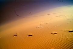 ombre (enrico sprea) Tags: sabbia deserto dune orme ergchebbi merzouga darkaoua marocco  almamlakaalmaghribiyya maghreb regnomaghrebino  tagelditnlmerib africa nordafrica africasettentrionale sahara saharadesert sahr tramonto sounset sand vento allaperto pentaxlife meknstafilalet arido ombre sole coucherdusoleil crepuscolo paesaggio duna minimalismo segni