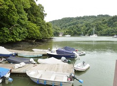 The River Dart at Greenway ferry terminal, Kingswear, Devon (DEE VEE 40) Tags: greenway nationaltrust riverscene
