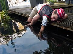 DSCF2290 (ronaldzijlstra2) Tags: kid son boy dog cairnterrier koi vis vish vijver pond