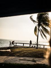 (ross_123) Tags: cuba latin central centro america travel photography fuji x xf 27mm pancake lens 28 f28 cienfuegos water sea palm treet silhouette sunset bike locals cubans series xt10 xt 10 mirroless camera system photrography photographs pictures fujifilm