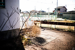Afterglow (yasu19_67) Tags: housingcomplex sunset sunlight shadow weed atmosphere photooftheday alley braunautowide35mm28 35mm sony7ilce7 m42 xequals xequalscolornegativefilms digitaleffects filmlook filmlike filmfake osaka japan