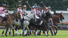 Guards Polo Club Aug 2016 10 (Timelapsed) Tags: sport ourdoors horseback hourse windsor windsorgreatpark