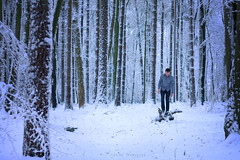 04012015 - sound of silence (lehmuellerflorian) Tags: wood winter white snow cold forest photography loneliness silence lonely conceptual terrifying screams weis