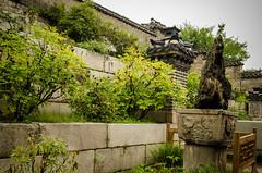 Untitled (lcayolap) Tags: korea seoul oriental southkorea seul changdeokgung   corea