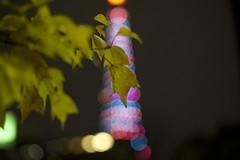 Tower_Bokeh (ishizen) Tags: japan tokyo sony voigtlander 日本 tokyotower 東京 nikonf 東京タワー α7 nokton58 colorskopar20
