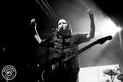 Placebo by Stacey Auld