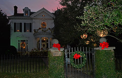 Christmas Lights (davidwilliamreed) Tags: christmas lights la nightshot availablelight neworleans fillflash afterdark stcharlesave