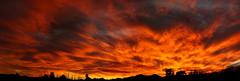 Sunset 2 22 15 #28 Panorama e (Az Skies Photography) Tags: sunset red arizona sky orange cloud sun rio yellow set skyline clouds canon scarlet skyscape eos rebel gold 22 golden twilight dusk salmon az rico february nightfall 2015 arizonasky arizonasunset riorico rioricoaz 22215 t2i arizonaskyline canoneosrebelt2i eosrebelt2i arizonaskyscape february222015 2222015