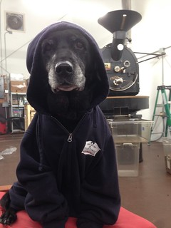 Keeping warm while roasting coffee