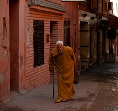 15022015-P1170614 (Philgo61) Tags: africa lumix vacances market panasonic morocco maroc marrakech souk xxx souks marché vacance afrique médina gf1