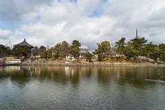 ~Nara Park (yiming1218) Tags: park trip travel japan zeiss temple sony  nara kansai za      a7ii   a7m2 fe2470 ilce7m2