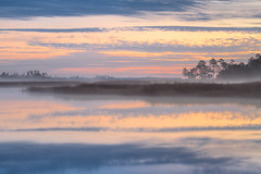 Winter Reflection (Charles Opper) Tags: morning sky mist color reflection nature water fog clouds sunrise canon georgia landscape dawn swamp marsh canon70200mm canon7d blackbeardcreek bulltownswamp