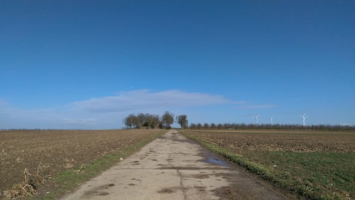 Beyond Zornheim
