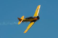 pl30juin16harvard13 (lanpie012000) Tags: gatineau ynd cynd airshow northamericanhavard4 ncx811b