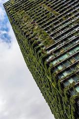 the vine (Greg M Rohan) Tags: project365 architectureinpixels evergreen mall centralpark sydney 2016 units highrise vines plants vine diagonal minimalism d7200