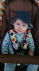 Hat (kayatkinson-simson) Tags: blueeyes pumpkinpatch kane 6monthsold afternoonwalk mamaspapas