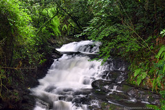 Waterfall (himanshu gogoi) Tags: waterfall shillong meghalaya nature northeastindia