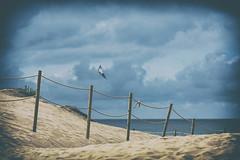 Bailando con el viento! (GLAS-8) Tags: mar arena playa cometa viento nubes azul mcarmenverde glas8 julio