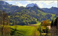 paisible Suisse ! (AMCC, merci pour votre regard !) Tags: montagne campagne suisse nikon la gruyre