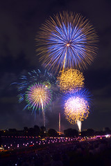 Itabashi and Todabashi Fireworks 2016 (DigiPub) Tags: 389592 esp firework todabashi itabashi 101018225 istock audience spectator groupofpeople mobilephone lantern fireworkmanmadeobject fireworkdisplay riverside riverbank looking annualevent night exploding multicolored tree summer unrecognizableperson horizon horizonoverland sky entertainmentevent japaneseculture copyspace outdoors longexposure urbanscene citylife urbanskyline lighttrail blurredmotion nightlife vertical