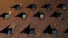 Gdansk's water mill (chrysaor1234) Tags: gdansk polska pologne poland red orange light roof water mill windows