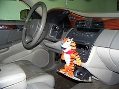 """Meet my new friend  """" Tony  """" (Bob the Real Deal) Tags: tiger tony fresno tonythetiger citycleanup"""