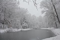 "Pond during snowfall • <a style=""font-size:0.8em;"" href=""http://www.flickr.com/photos/92887964@N02/15858630568/"" target=""_blank"">View on Flickr</a>"