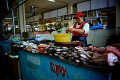 """Marisqueria - Poissonerie • <a style=""""font-size:0.8em;"""" href=""""http://www.flickr.com/photos/113766675@N07/15870475771/"""" target=""""_blank"""">View on Flickr</a>"""