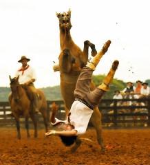 Trocando de ponta (shumpei_sano_exp8) Tags: brazil horses horse southamerica brasil caballo cheval caballos bravo cavalos pferde cavalli cavallo cavalo gauchos pferd riograndedosul pampa campanha brsil chevaux gaucho amricadosul bag fronteira caduta gacho amriquedusud gachos sudamrica suramrica amricadelsur firstquality sdamerika littlestories jineteada americadelsud gineteada americameridionale picswithsoul liederinbildern