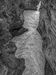 Athabasca River, Jasper National Park, Alberta (Edwaste) Tags: blackandwhite bw snow canada mountains monochrome forest landscape rocks jasper lakes canadian rapids boulders rivers glaciers streams jaspernationalpark mountainrivers