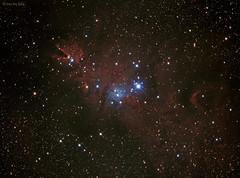 NGC2264 (The Christmas Tree Nebula/Cone Nebula/Snow Flake Nebula/Fox Fur Nebula) - Reprocessed on 20141214 (CSky65) Tags: ngc christmastree nebulae ngc2264 conenebula astrometrydotnet:status=solved astrometrydotnet:id=nova943644 snowflakenebula