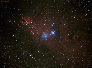 NGC2264 (The Christmas Tree Nebula/Cone Nebula/Snow Flake Nebula/Fox Fur Nebula) - Reprocessed on 20141214
