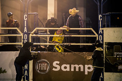 Segura Peo (muriloribas) Tags: brazil paran brasil fiat bull rodeo sul boi rodeio 2014 jacarezinho competio segurapeo fetexas fotomuriloribas iinteiror