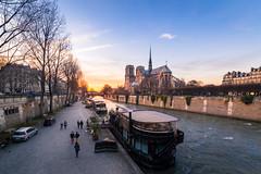 Notre-Dame de Paris (Matthieu Plante) Tags: sunset paris france europe cathedral notredame cathdrale canon6d