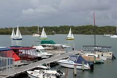Farr yachts (Gillian Everett) Tags: river boats yacht racing 106 boating noosa yachts 115 odc wags noosariver 2015 farr noosayachtclub