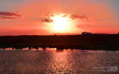 Wyndham Sunset Crop (fatima_suljagic) Tags: sunset art nature studio landscape photo nikon maja ngc large australia melbourne canvas postcards prints format werribee d800 wyndham nikonflickraward fatimasuljagicmelbourne