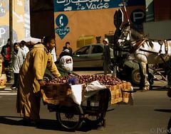 14022015-P1170551 (Philgo61) Tags: africa wagon lumix panasonic morocco maroc marrakech souks afrique figues charette médina figue gf1 barbarie