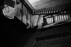 flights of fancy (Albion Harrison-Naish on/off) Tags: architecture night sydney australia olympus explore nsw newsouthwales sydneyharbourbridge em5 sydneystreetphotography streetphotogoraphy olympusem5 lumixg20f17ii