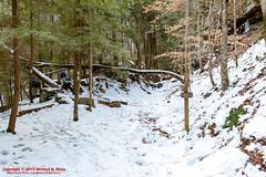 Possum Creek Gorge Section of the Cumberland Trail (mikerhicks) Tags: winter usa ice geotagged unitedstates hiking tennessee flattopmountain soddydaisy cumberlandtrail tennesseestateparks cumberlandtrailstatepark canon7dmkii sigma18250mmf3563dcmacrooshsm possumcreekgorgesection threegorgessegment geo:lat=3535501167 geo:lon=8517166333