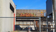 SIGH (BLACK VOMIT) Tags: car train graffiti ol south dirty dos sigh coal freight coalie