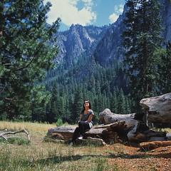 #Yosemite #Yashica #USA (pxl77) Tags: square squareformat 6x6 124g yashicamat124g yashica tlr iso100 film analog fuji fujichrome fujifilm fujichromeprovia100f rdpiii provia100f medium mediumformat yosemite nature portret 120 rollfilm yashinon 80mm f35 yashinon80mmf35 epsonperfectionv600photo usa slide twinlens reflex