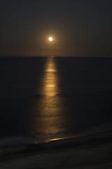 Virginia Beach Moonrise (elektron9) Tags: virginiabeach virginia va beach moonrise longexposure night nighttime eastcoast horizon moon halo water ocean sand lunar yellow blue