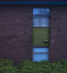 across the street (dotintime) Tags: apartment building brick wall window glass curtain shrubbery hedge foliage color dotintime meganlane