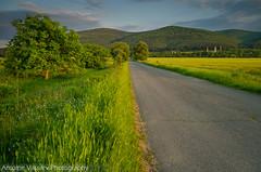 / Towards the mountain (AVasilev) Tags: mountain sky road field sunset trees zavet village bulgaria