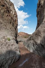 San Lorenzo Canyon (repete7 (back!)) Tags: newmexico water creek canon us unitedstates canyon bureauoflandmanagement socorronm sanlorenzocanyon socorronewmexico blmlands canon1585 canon70d