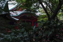 SDQ_0600lr (yoshitoshi ABe) Tags: sigma   sigma2470mmf28ifexdghsm 20160716 sdquattro