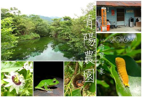 青陽農園.jpg
